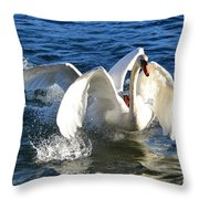 Swans Playing Throw Pillow