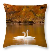 Swans Soft And Smooth Throw Pillow
