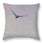 Swans Taking Off From Tagish River Throw Pillow