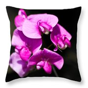 Sweat Pea Throw Pillow by Dawn OConnor