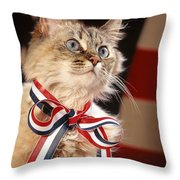 Sweet And Patriotic Throw Pillow