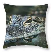 Sweet Baby Alligator Throw Pillow
