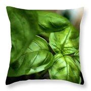 Sweet Basil From The Garden Throw Pillow