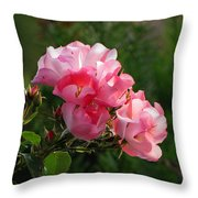 Sweet Blossom Mini Roses Throw Pillow