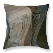 Sweet Curves Throw Pillow
