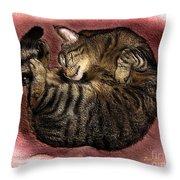 Sweet Dreams 2 Throw Pillow