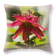 Sweet Dreams Passion Flower Throw Pillow