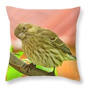 Sweet Finch Painted Effect Throw Pillow