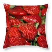Sweet Florida Strawberries Throw Pillow