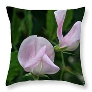 Sweet Pea Blossoms Throw Pillow