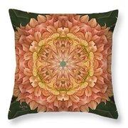 Sweet Peaches Throw Pillow