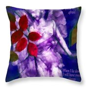 Sweet Sleep 2 Throw Pillow