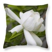 Sweet Sweet Gardenia Throw Pillow