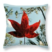 Sweetgum Throw Pillow