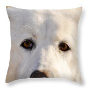Sweetie In The Boonies Throw Pillow