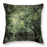 Sweetwater Strand Throw Pillow