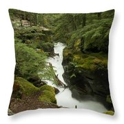 Swift Currents Throw Pillow