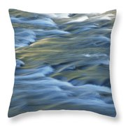 Swiftly Rushing Water In A Stream Throw Pillow