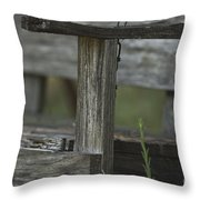 Swing In The Woods Throw Pillow
