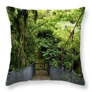 Swingbridge Throw Pillow