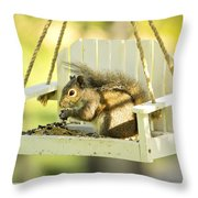 Swingin Squirrel Robber Throw Pillow