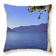 sycamore tree at the Lake Maggiore Throw Pillow by Joana Kruse