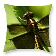 Symetry  Throw Pillow by Bruce J Robinson