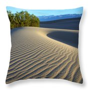 Symphony Of The Sand Throw Pillow by Bob Christopher