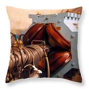 Synchrotron Alignment Magnet Throw Pillow