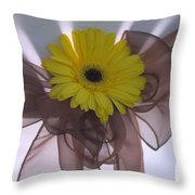 T And T 5 Throw Pillow