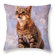 Tabby Cat Portrait Of A Cat Throw Pillow