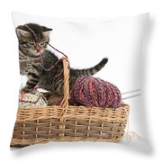 Tabby Kitten Playing With Knitting Wool Throw Pillow