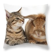 Tabby Kitten With Rabbit Throw Pillow