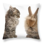 Tabby Kitten With Young Rabbit, Grooming Throw Pillow