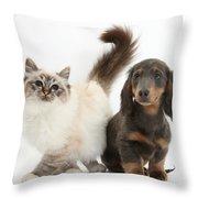 Tabby-point Birman And Dachshund Pup Throw Pillow