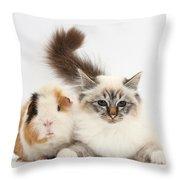 Tabby-point Birman Cat And Guinea Pig Throw Pillow