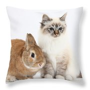 Tabby-point Birman Cat And Rabbit Throw Pillow