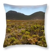 Table Mountain National Park Throw Pillow