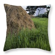 Tacumshane Windmill, County Wexford Throw Pillow