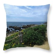 Take A Walk With Me Throw Pillow