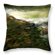 Beautiful River Throw Pillow