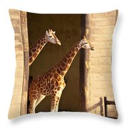 Taking A Look Throw Pillow by Bob and Nancy Kendrick