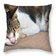 Taking  Nap Throw Pillow