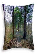 Taking The Long Trail Throw Pillow