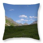 Talkeetna View Throw Pillow