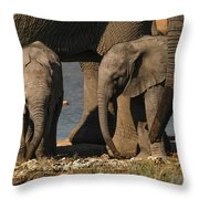 Tall And Short Throw Pillow