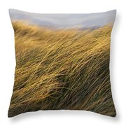 Tall Grass Blowing In The Wind Throw Pillow