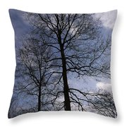 Tall Silhouetted Trees Throw Pillow