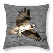 Talons Throw Pillow by Paul Marto