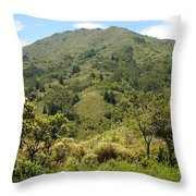 Tamalpais Daydream Throw Pillow